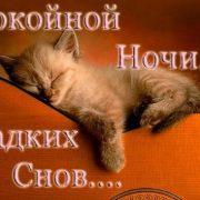 Сладкий спокойной ночи картинки и открытки 028
