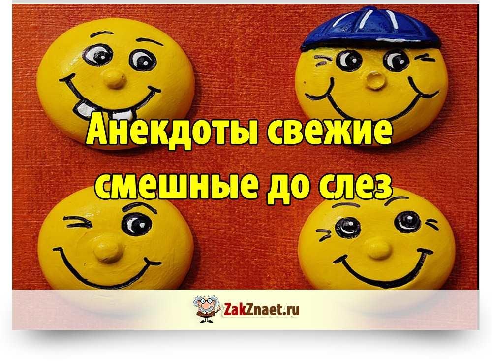 Смайл смешно до слез   очень веселые011