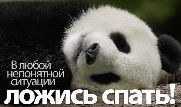 Смешные картинки спать лег, механика для детей