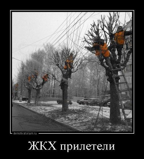 Смешные картинки про весну   подборка005