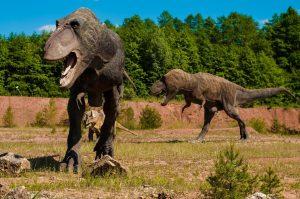 Смотреть фото настоящих динозавров   картинки 026
