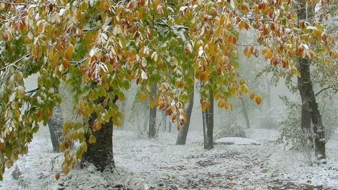 Снег в сентябре картинки и фото 022