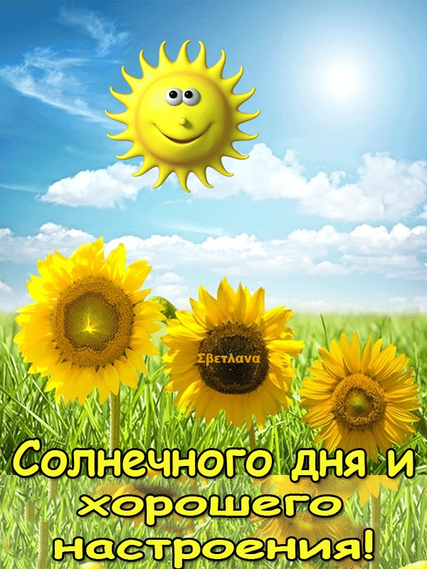 Солнечный день анимации картинки
