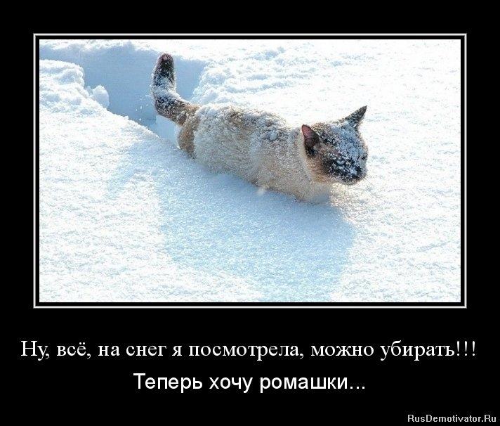 Со снегом картинки прикольные   подборка018