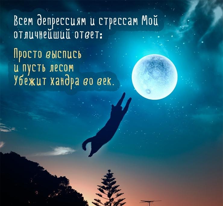 Спокойной ночи дорогому картинки и открытки008