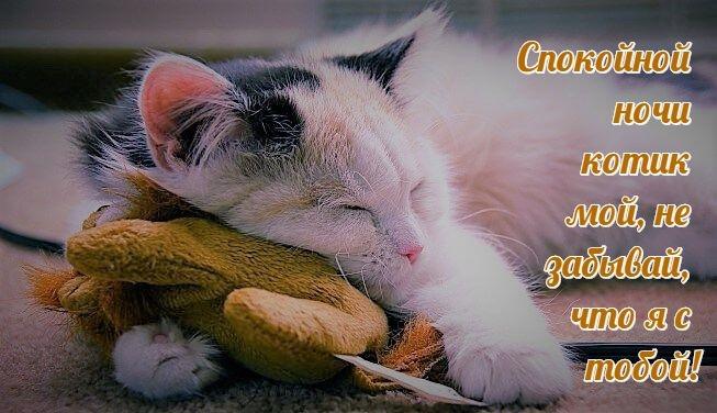 Спокойной ночи дорогому картинки и открытки014