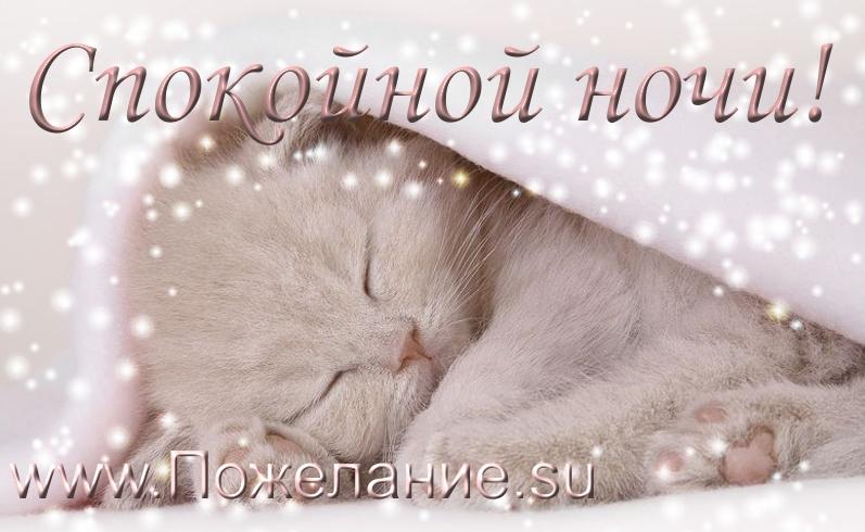 Спокойной ночи картинка сыну   очень милая010