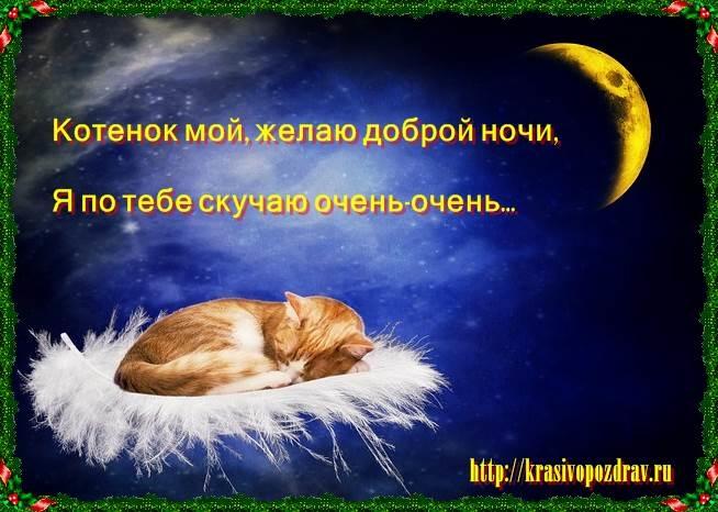 Спокойной ночи картинка сыну   очень милая025