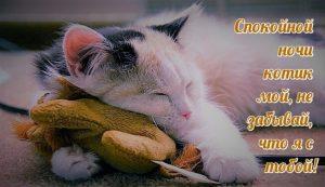Спокойной ночи сладкий картинки и открытки 021