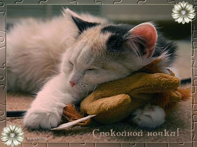 Спокойной ночи собачки картинки и открытки003