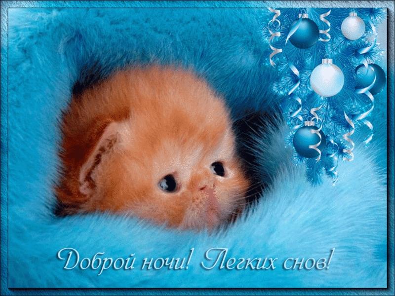 Спокойной ночи собачки картинки и открытки004