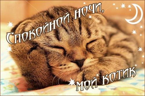 Спокойной ночи собачки картинки и открытки012