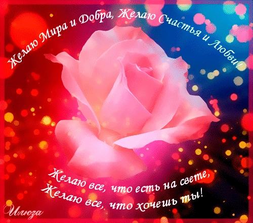 Счастья, добра и мира   прикольные картинки 013