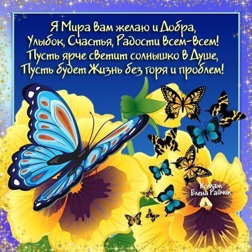 Открытки, картинки с бабочками и пожеланиями