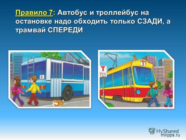для картинки как обходить автобус троллейбус трамвай относиться всем животным