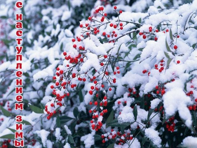 С началом зимы картинки и открытки 018