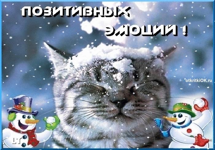 С началом зимы картинки и открытки 025