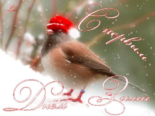 С первым днем зимы картинки с надписями026