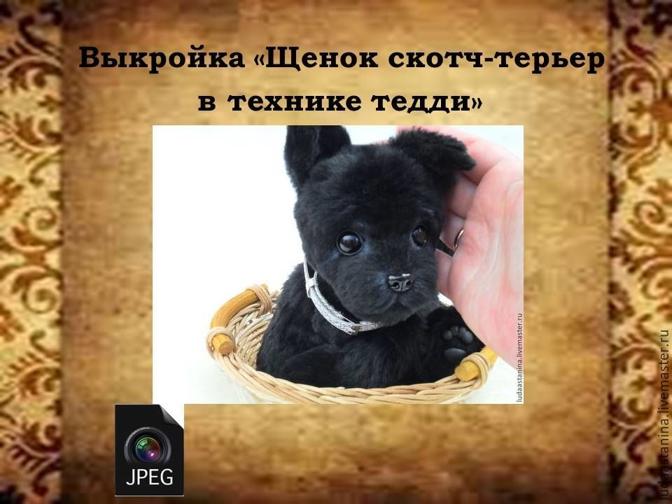 Тедди щенок выкройка   картинки006