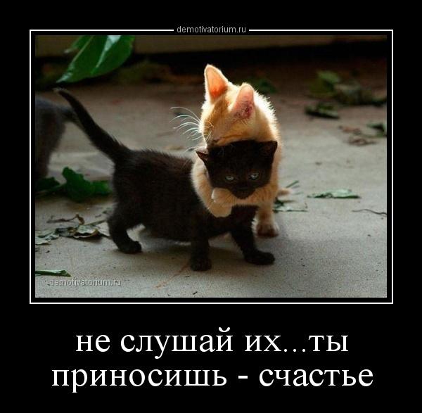 Ты приносишь счастье картинки и фото 007