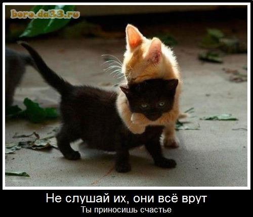 Ты приносишь счастье картинки и фото 011