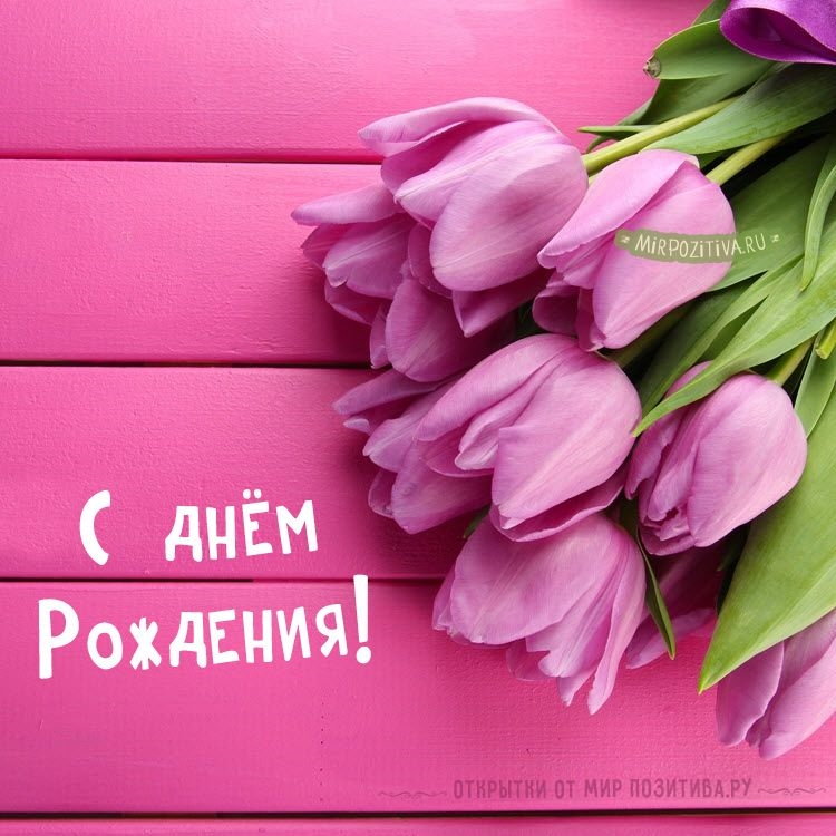 Тюльпаны фото с днем рождения   подборка 002