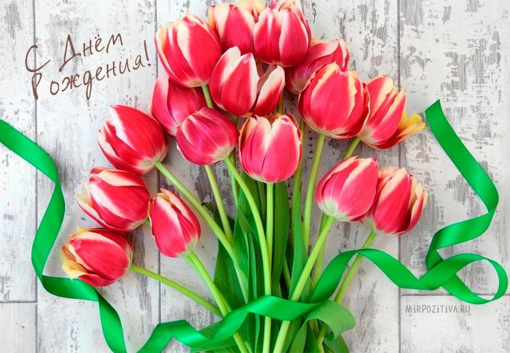Тюльпаны фото с днем рождения   подборка 006