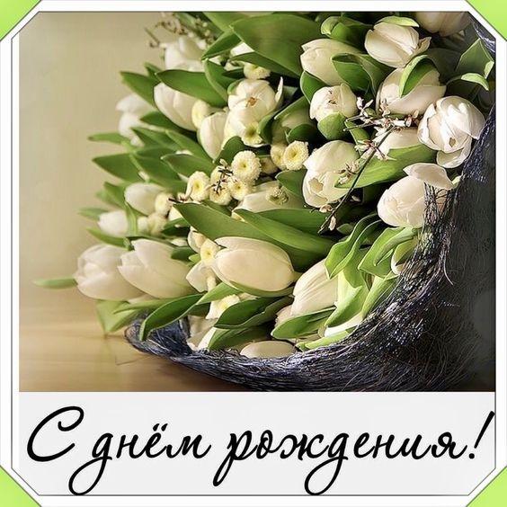 Тюльпаны фото с днем рождения   подборка 013