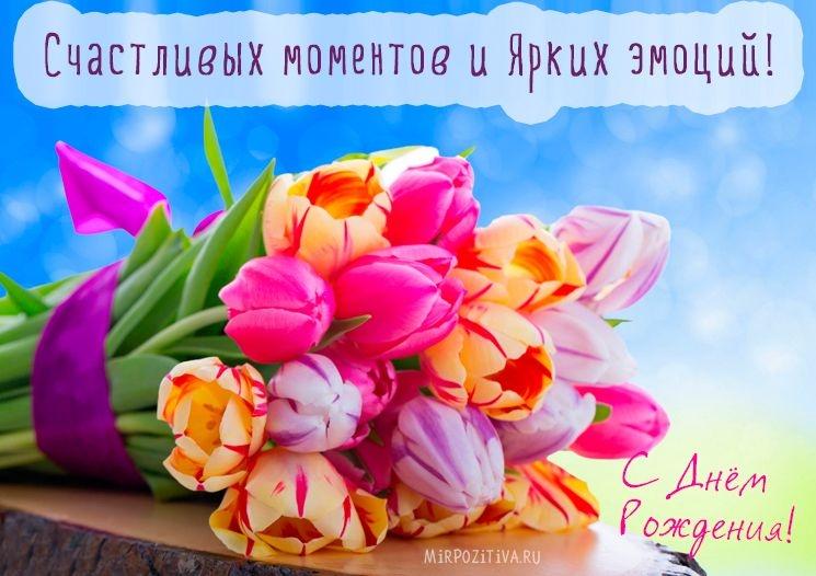 Тюльпаны фото с днем рождения   подборка 017