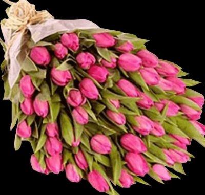 Тюльпаны фото с днем рождения   подборка 020