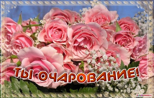 Удовольствие от жизни картинка и открытка010