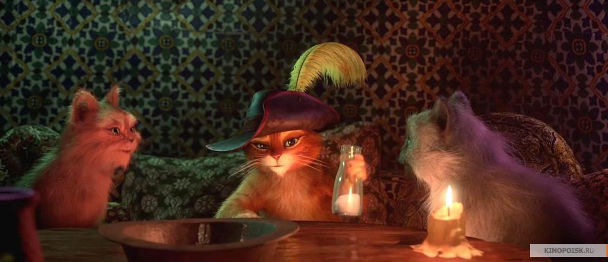 Фото Кот в сапогах с большими глазами подборка (33)