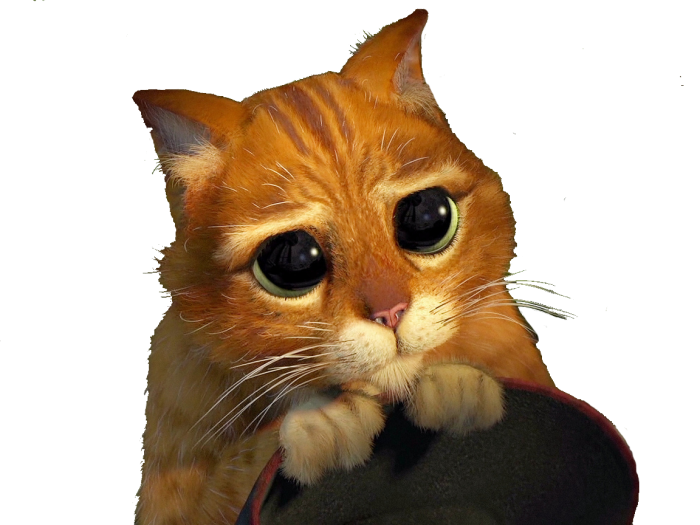 Фото Кот в сапогах с большими глазами подборка (7)