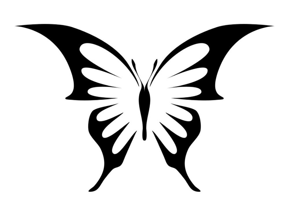 Фото бабочки картинки для детей шаблоны 026