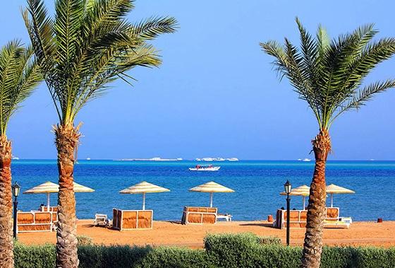 Фото в море в Египте   подборка 004