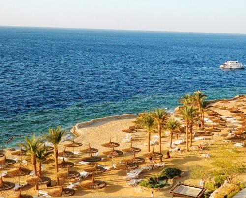 Фото в море в Египте   подборка 025