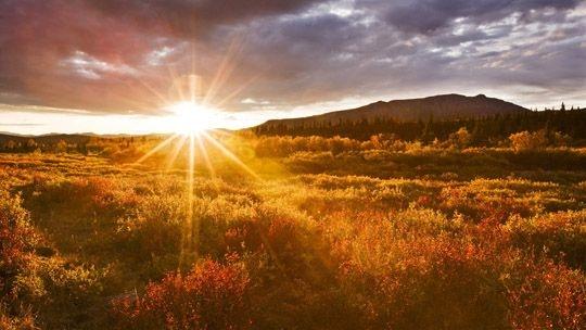 Фото девушка и закат солнца   подборка 004