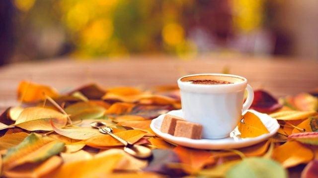 Фото кофе и осени   подборка картинок 027