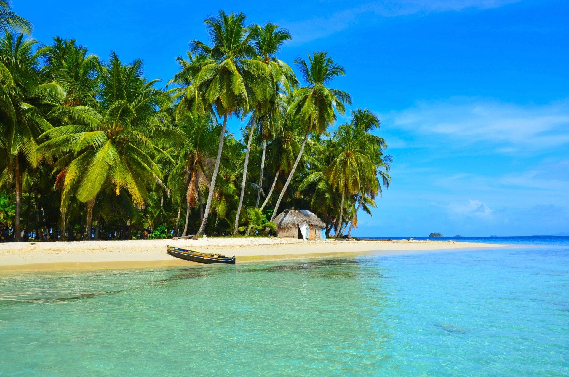 море пальмы кофе