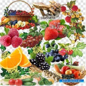 Фото на белом фоне фруктов   для фотошоп 027