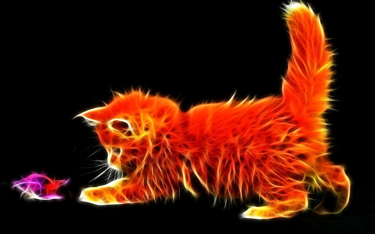 Фото на рабочий стол кошки и котята   коллекция (19)