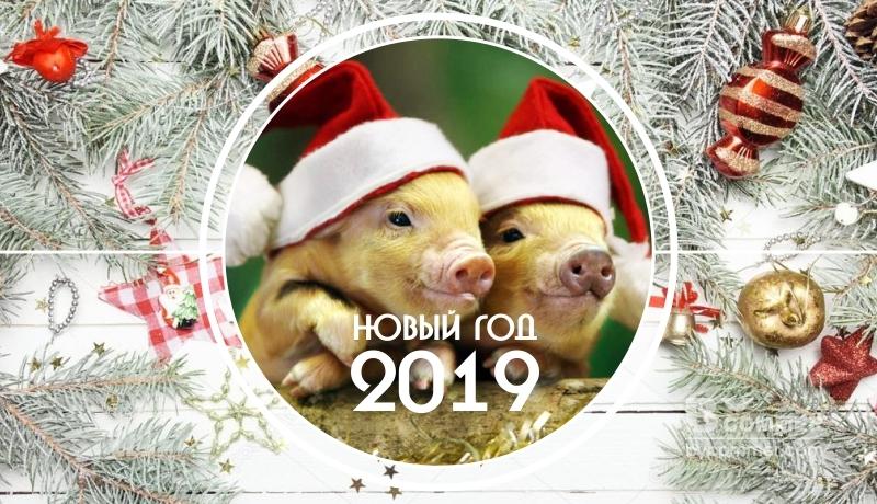 Фото нового 2019 года   подборка 001
