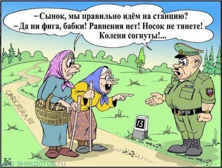 Фото приколы военные   смешные картинки 017