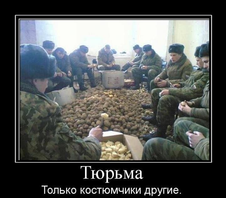 Фото приколы военные   смешные картинки 018