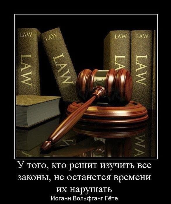 Фото юриста за работой   подборка картинок 013