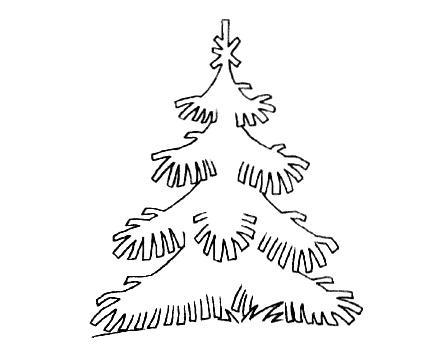 Хвойные деревья раскраски для детей   картинки 009
