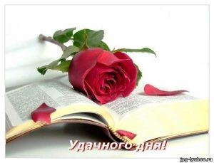 Хорошего дня романтические картинки020