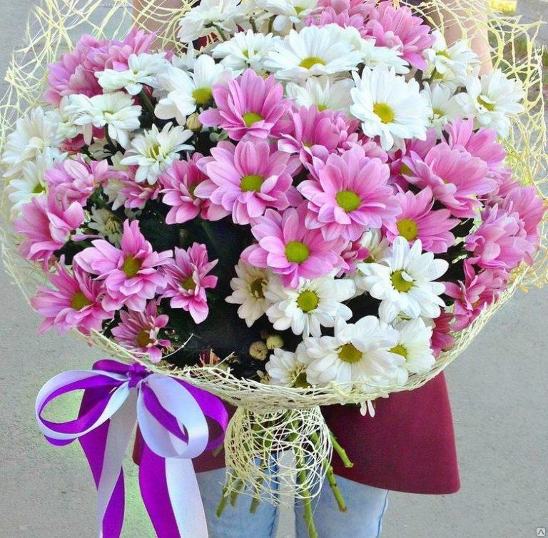 Кустовые хризантемы букеты, оптом