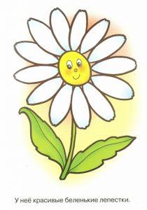 Цветочек на белом фоне   картинки для детей 020