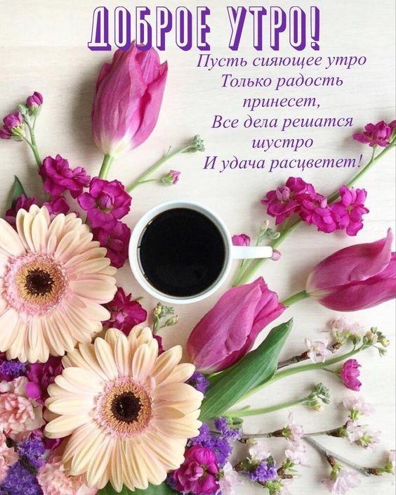 Красивые открытки с цветами доброе утро, изображением зайца для